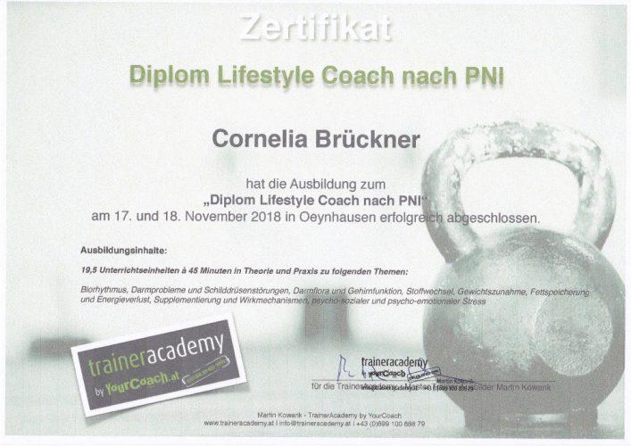 Diplom Lifestyle Coach nach PNI